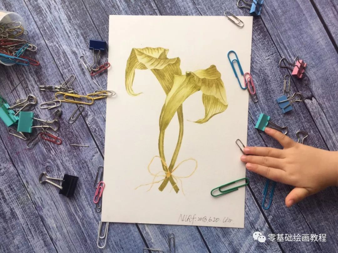 超详细的百合花绘画教程,你会画了吗?快来试试吧!