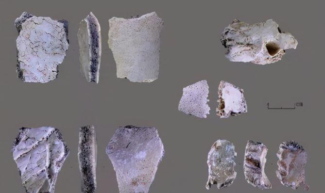 河南发现距今3.2万年人类头骨化石,对中国人起源意义重大!