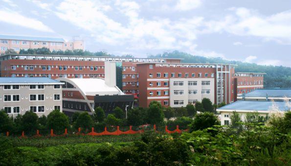 四川文化艺术学院就业分析,艺术生占据大头,就业安排相对稳定