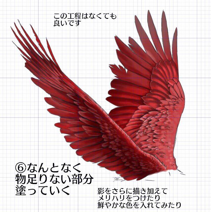 翅膀怎么画才好看?仅需8个步骤,画翅膀真的很简单!