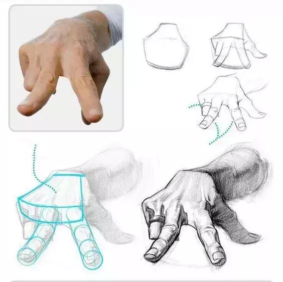素描人体结构图一步步拆解教你,全干货讲解!